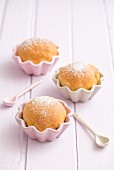 Buchteln (baked, sweet yeast dumplings) in muffin dishes
