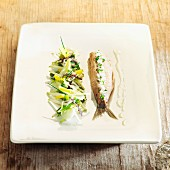 Chicory salad and Dutch herring with apple