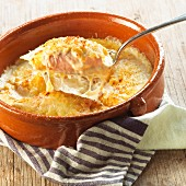 Chicory gratin with a ham and cheese sauce