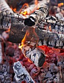 Camp-fire (close-up)