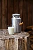 A glass of milk and a milk churn on a tree stump