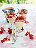 Panna cotta with redcurrants