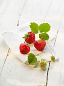 Strawberries with leaves on a cloth