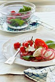 Caprese salad with pickled sour onions