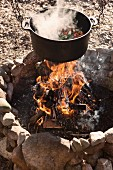 Steaming vegetable stew in cooking pot suspended over campfire in stone hearth