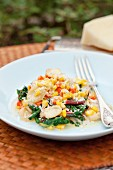 Orecchiette with roasted sweetcorn, chard and Parmesan cheese