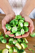 Hands holding Brussels sprouts