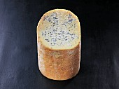 Fourme de Montbrison (French cow's milk cheese)
