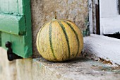 A melon on a window ledge