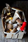 Fresh porcini mushrooms in a wooden basket