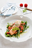 Steamed salmon on a bed of rocket