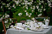 Set table below apple tree