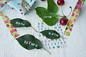 Names written on cherry leaves