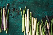 Various types of asparagus