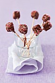 Fruit jelly lollies with chocolate glaze