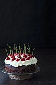 Chocolate cake with cream cheese frosting and fresh cherries on a rustic cake stand