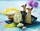 Easter biscuits decorated with icing sugar