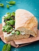 Ciabatta sandwich with herb cream, lambs lettuce, olives and pine nuts