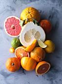 An arrangement of various citrus fruits