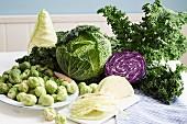 An arrangement of various cabbages