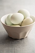 Hens eggs with green shells in a porcelain bowl