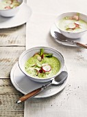 Foamy radish soup
