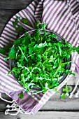 A bowl of rocket on a striped cloth