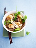 Oriental cod soup with noodles and dumplings