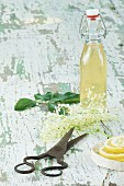 Elderflower syrup, elderflowers, lemon slices and a pair of scissors on a wooden table