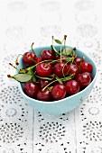 Fresh sour cherries in a bowl
