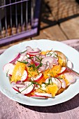 Orange and radishes salad