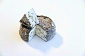 Chevre Bleu D Argental (goat's cheese from Burgundy)