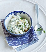 Camembert cream cheese with fresh herbs