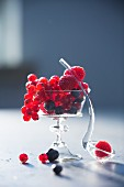 Various berries in a stemmed glass