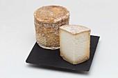 Persillé de Tignes (cheese from Savoy, France)