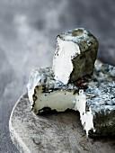 Ash cheese