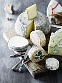 An arrangement of cheeses and bread