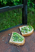 Bruschetta topped with broad beans, goat's cheese, olive oil and lavender flowers