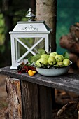 Apples and lantern on wooden bench in garden