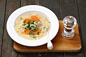 Chicken broth with noodles and carrots