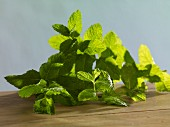 Fresh mint on a wooden table