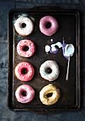 Doughnuts mit bunter Glasur auf dem Backblech
