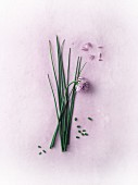 Fresh chives with flowers
