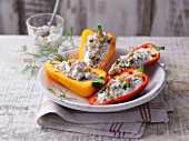 Stuff mini peppers with cottage cheese, herbs and pine nuts
