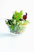 A mixed leaf salad in a glass bowl