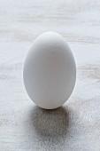 A goose egg