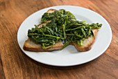 Steamed broccoletti on a sliced of bread
