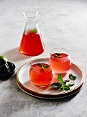 Cranberry cocktails with mint