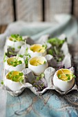 Parmesan custard and cress in egg shells