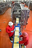 Workers and inspectors at a production line in a cheese factory